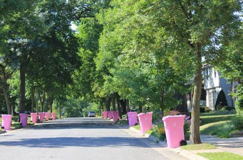 Curb Cancer with Pink Carts